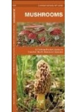 Alaska Mushrooms (pocket naturalist) - pckt natural