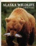 Alaska Wildlife: A Photo Memory - Johnny Johnson