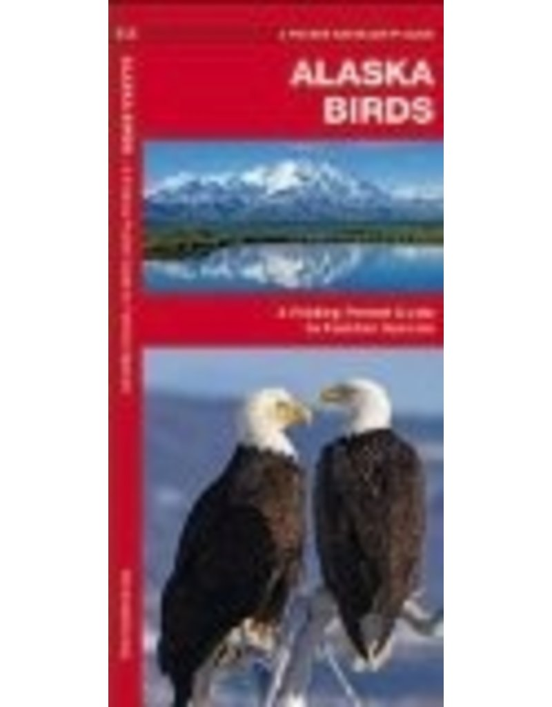 Alaska Birds: A Folding Pocket Guide to Familiar Species ,(Pocket Naturalist Guide Series) - James Kavanagh