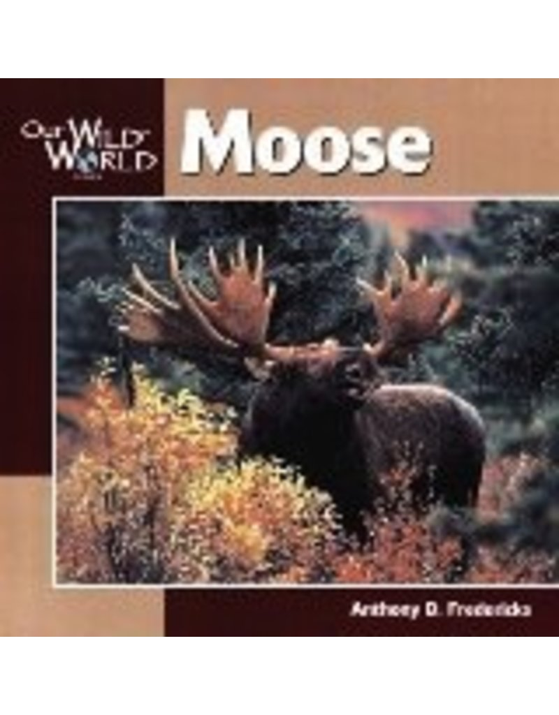 Our Wild World Moose