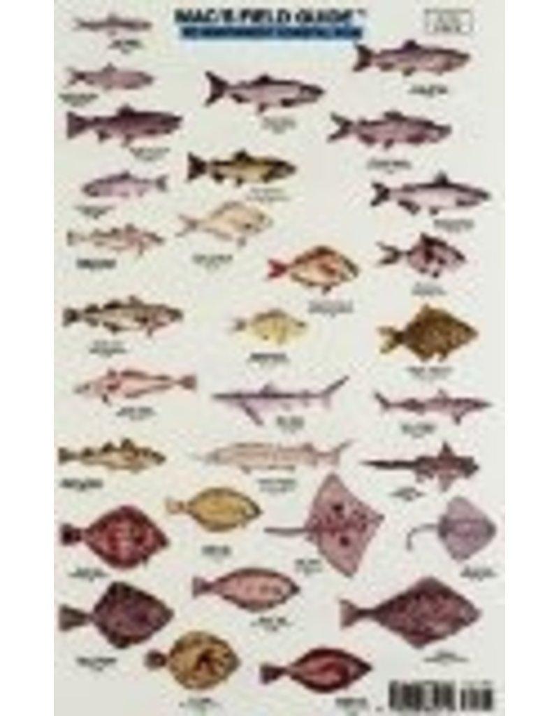 Mac's N W Coastal Fish
