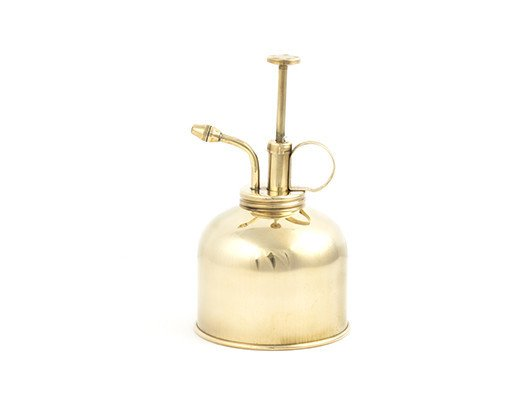Kikkerland Brass Watering Can