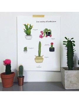 Joannie Houle Indoor Cacti Print