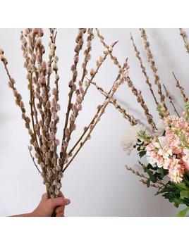 Bouquet Chatons de Saules