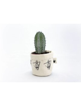 BoPo Petit Cache-Pot Cactus