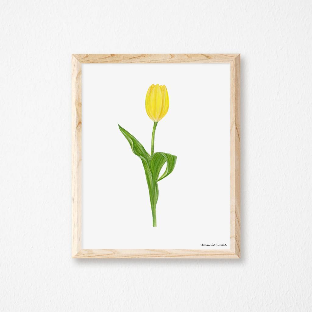 Joannie Houle Yellow Tulip Poster 8x10