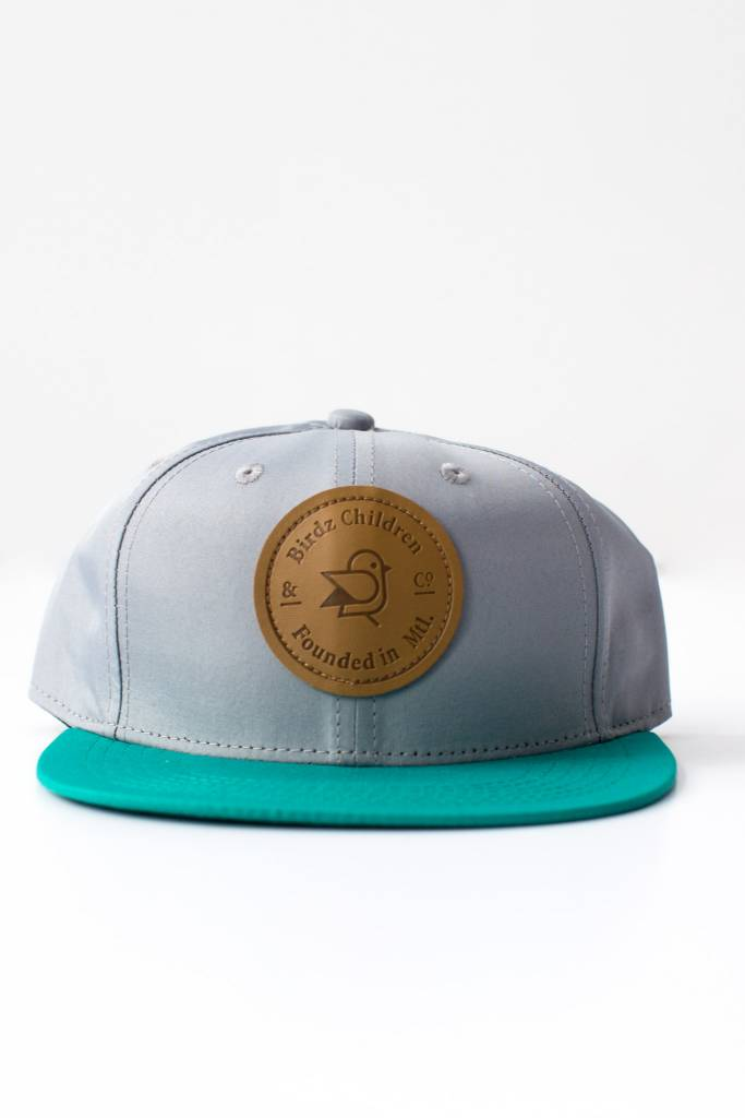 Birdz Aqua and Silver Cap
