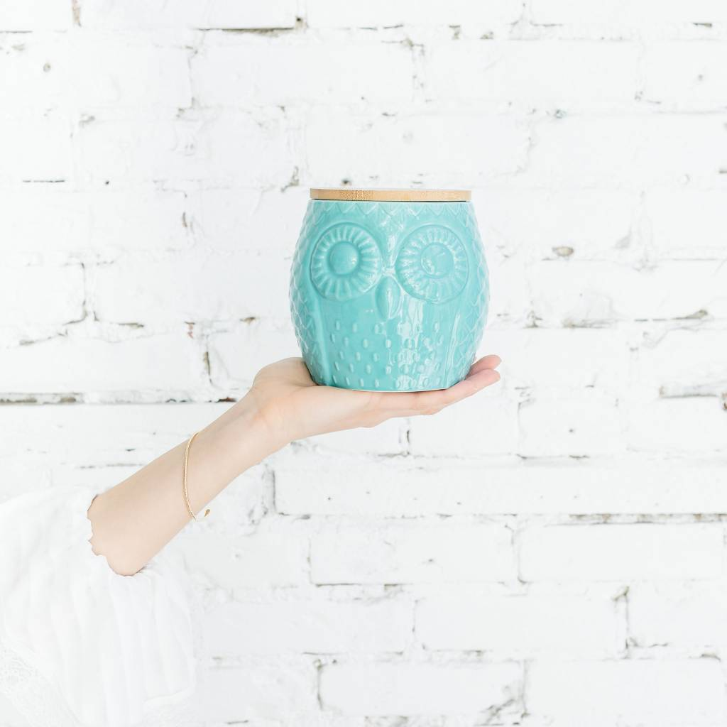 Danica/Now Owl Canister Small Turquoise