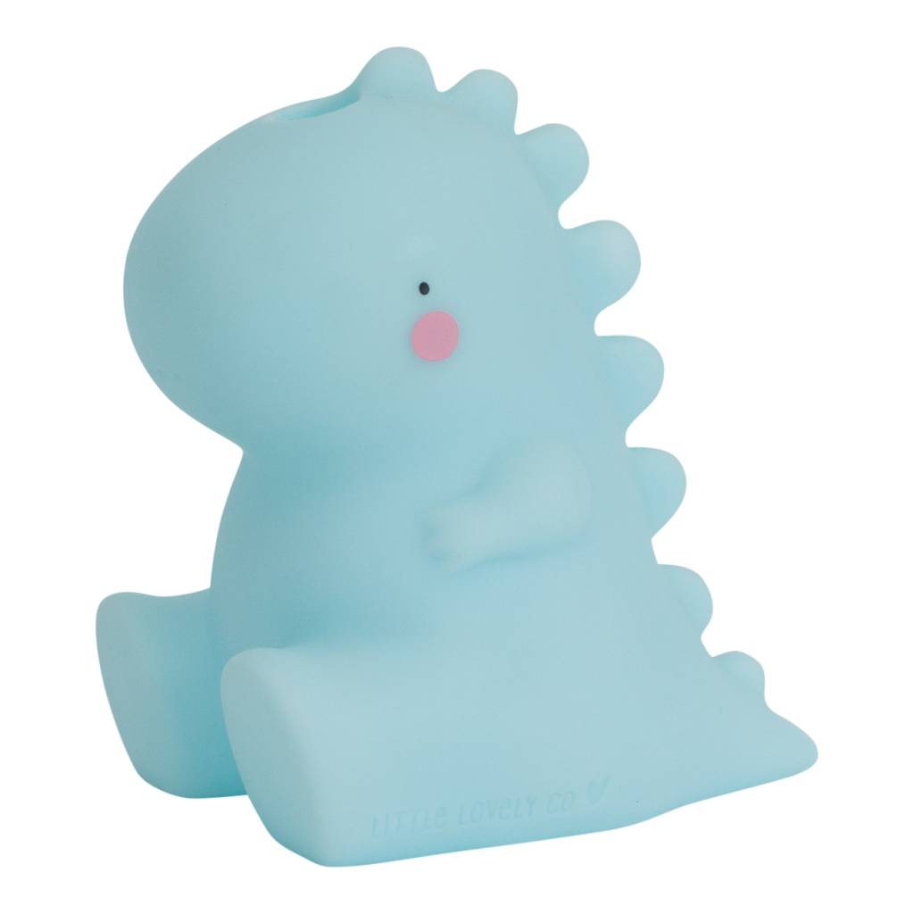 Little Lovely T-Rex Bath Toy