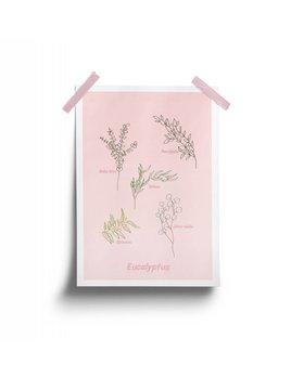 Fleur Maison Affiche Rose Eucalyptus