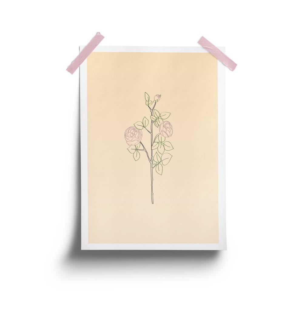 Fleur Maison Affiche Rosette