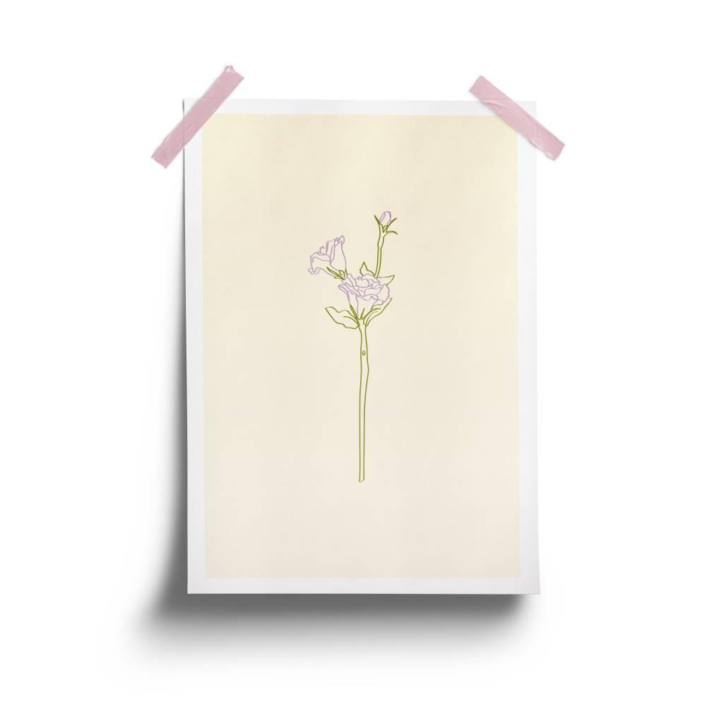 Fleur Maison Lisianthus Poster