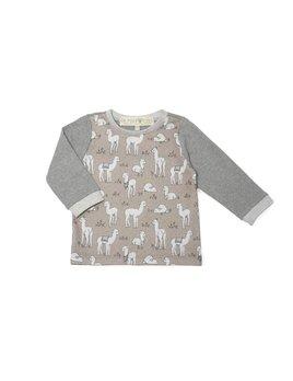 Un Pour Tous Sweatshirt Triglav