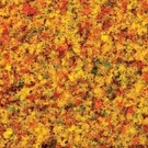 Bachmann 32836 Turf Blend Early Fall - Medium