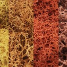 Woodland Scenics 165 Lichen - Autumn Mix