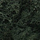 Woodland Scenics 164 Lichen - Dark Green