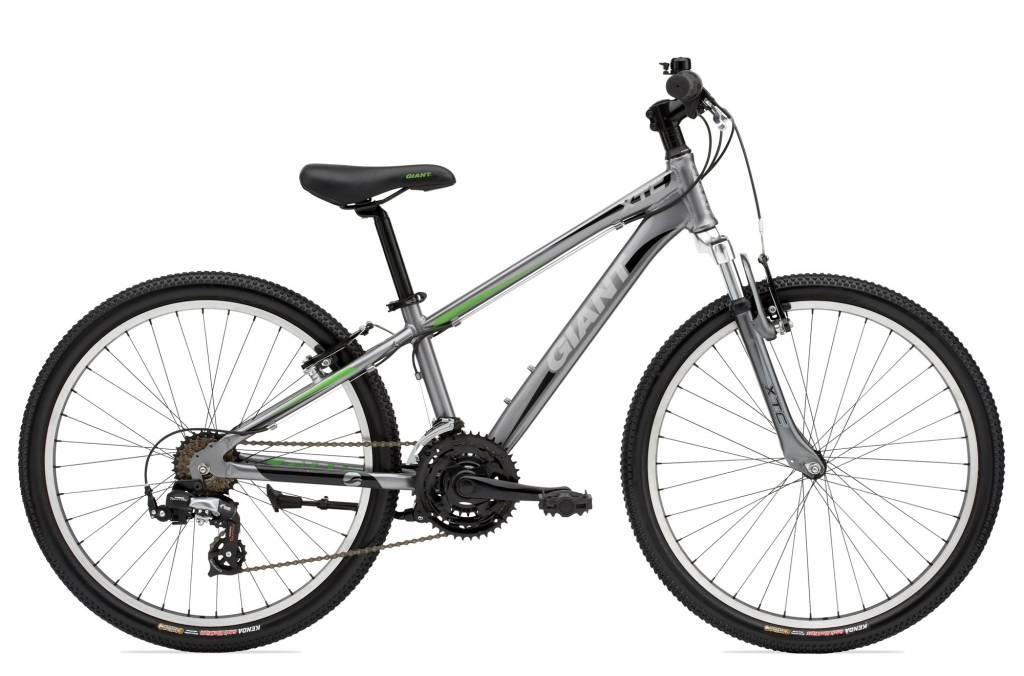 Giant Giant XTC 24\'\' Grey/Green Bicycle - Urban AdvenTours