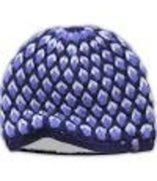 The North Face The North Face Briar Beanie