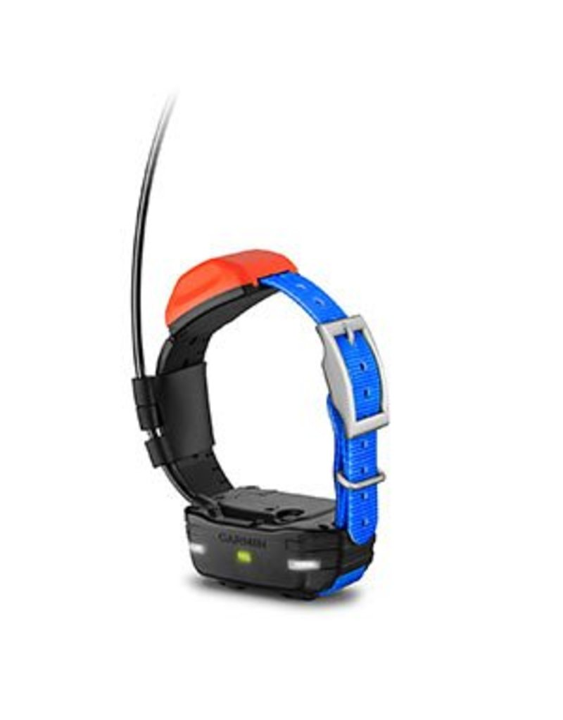 Garmin Garmin T5 Mini Collar (Blue)