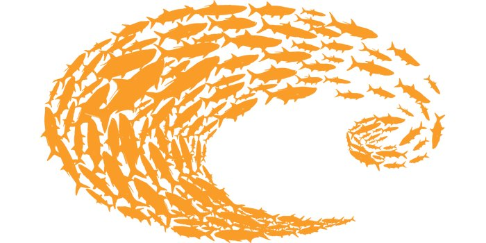 Costa Decal Costa Orange Logo LG Schoolin-Retail Pack