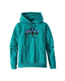 Patagonia Womens Fitz Roy Bison MW Hoody