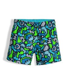 The North Face Youth Hike/Water Shorts