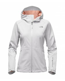 The North Face Womens Apex Flex GTX Jacket