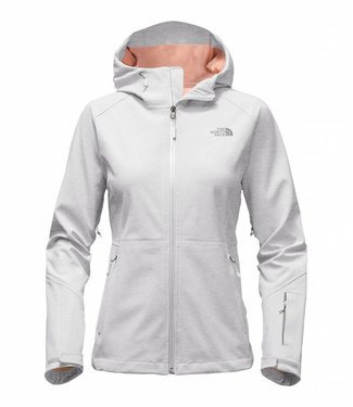 The North Face The North Face Womens Apex Flex GTX Jacket