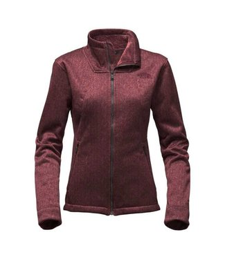 The North Face The North Face Womens Apex Chromium Jacket