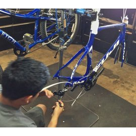 Build and Adjust Bike from Frame Up (Pro build)