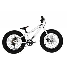 """Charge Cooker Bicycle Wht 20"""""""