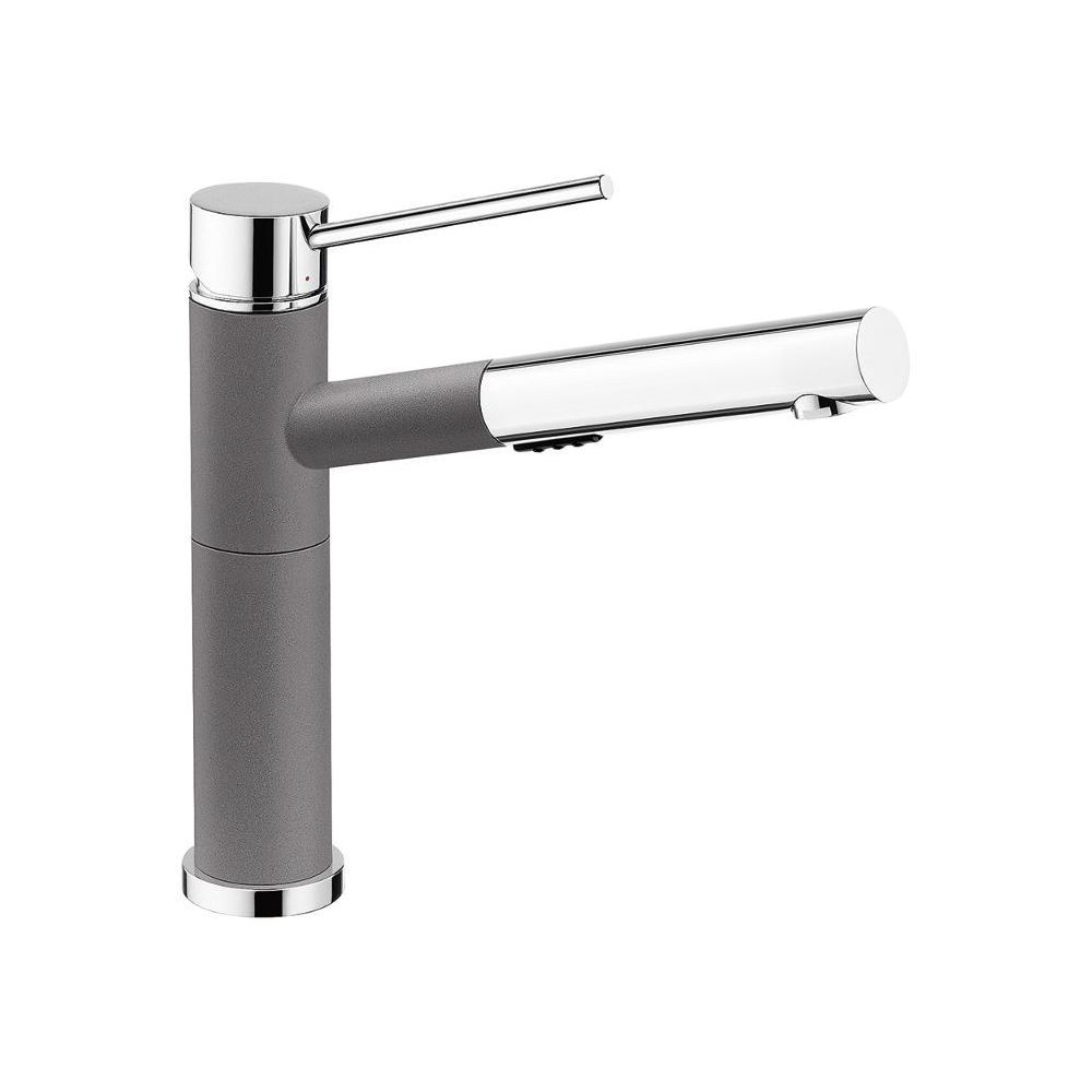 Blanco Alta Pull Out Kitchen Faucet With Dual Spray