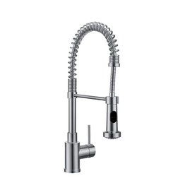 Blanco Blanco 400547 Diva Pull Down Dual Spray Kitchen Faucet