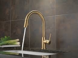 Delta 9159 Trinsic Single Handle Pull Down Kitchen Faucet Champagne
