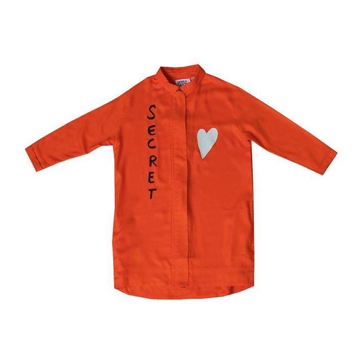 Zebra Secrete Shirt Dress
