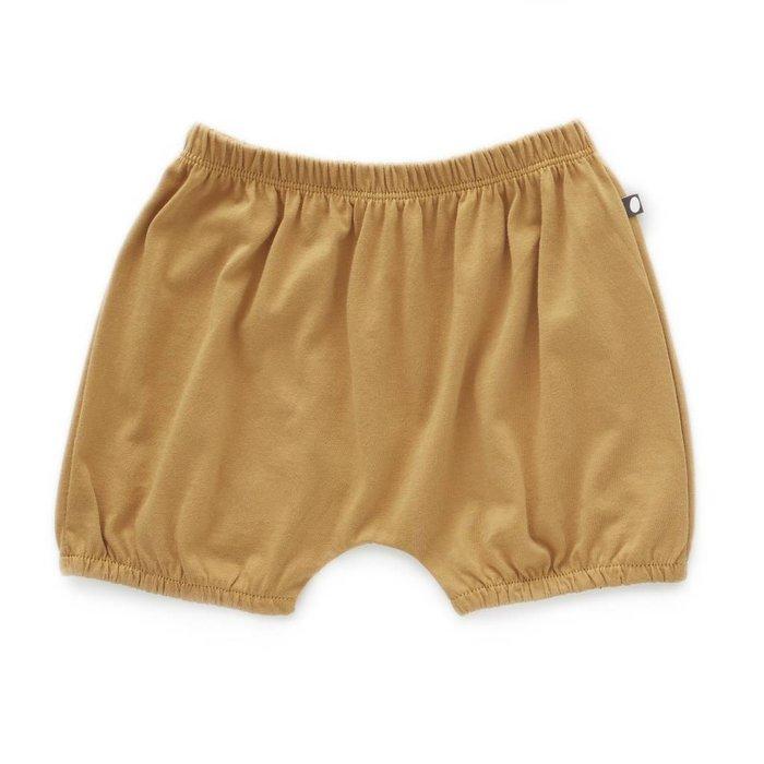 Bubble Shorts Ochre