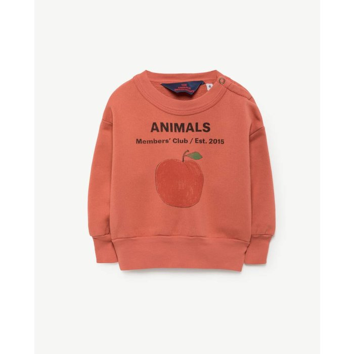 Bear Sweatshirt Red Peach