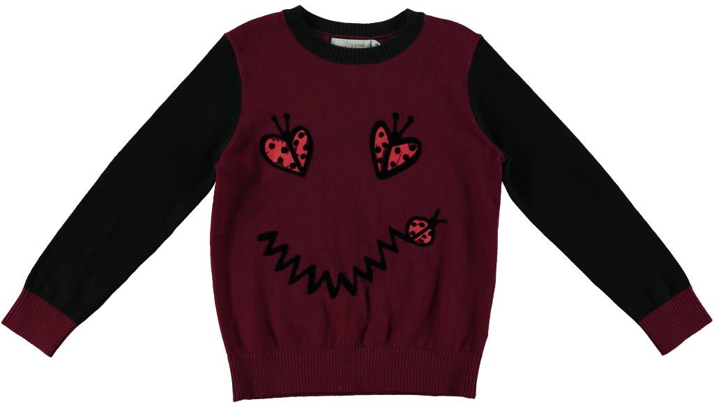 Lucky Pullover with Smile Lady Bug