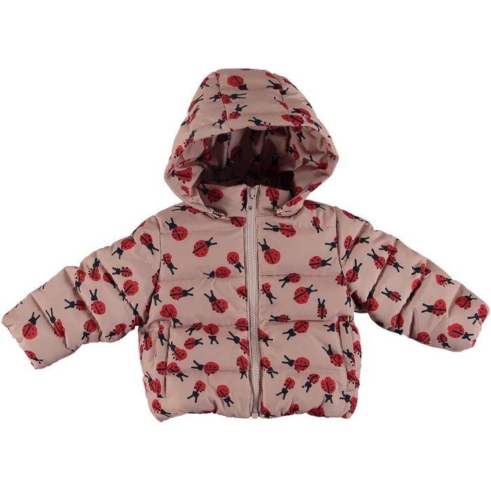 Ladybug Print Puffer Jacket