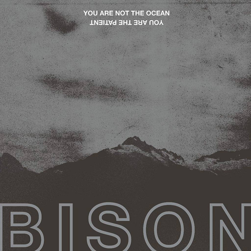Bison ‎– You Are Not The Ocean You Are The Patient