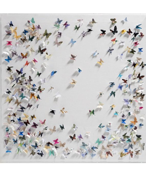 SCATTERED BUTTERFLIES IN ACRYLIC BOX