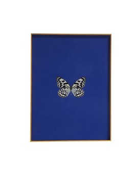 FRAMED BUTTERFLY PRINT IN MAZARINE BLUE