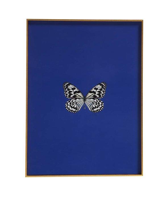 FRAMED BUTTERFLY PRINT IN MAZARINE BLUE