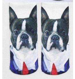 Dog Wearing Tie Ankle Socks