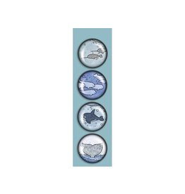 Madison Park Greetings iPop Magnets-Artic Sea