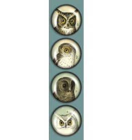 Madison Park Greetings iPop Magnets-CT Vintage Owls