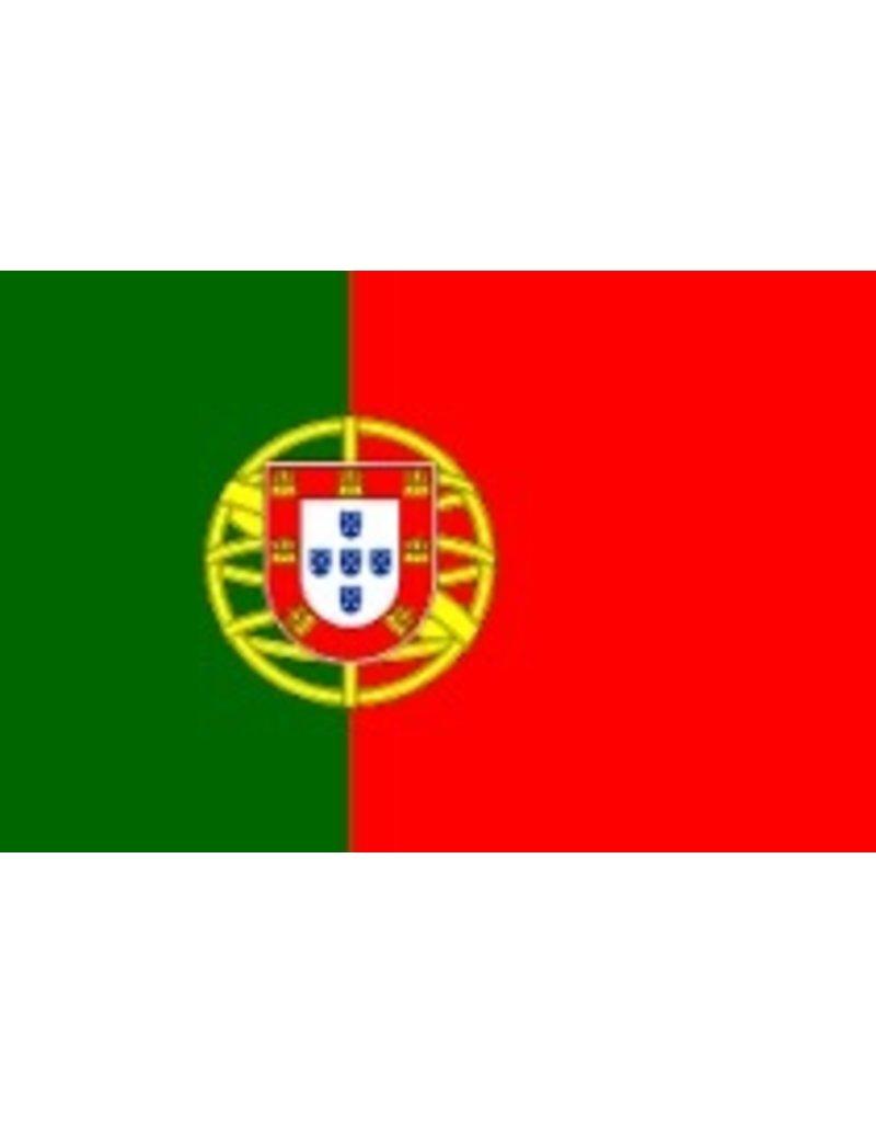 PORTUGUESE FLAG PICK BOX 100 CT
