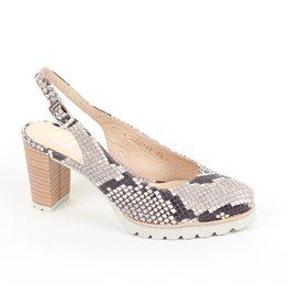Gadea Beautiful Paton Leather Shoe