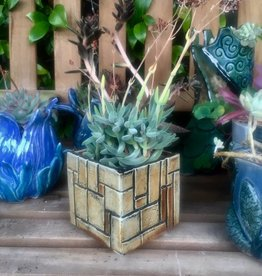 Friday Night in the Studio - July 27th - Hand Build Cube Planters