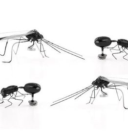 Kikkerland Insect magnets (set of 4)